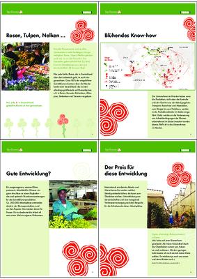 Übersicht über die Schulausstellung fair flowers.