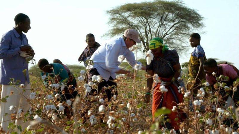 Leute auf einer Baumwollplantage_Auschnitt aus dem Film Fairtraders