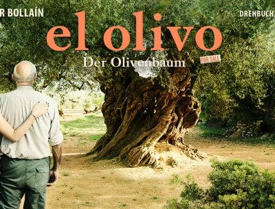 Ein Olivenbaum mit knorrigem Stamm